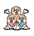 江戸っ仔犬 赤毛三兄弟(個別スタンプ:31)