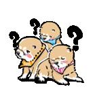 江戸っ仔犬 赤毛三兄弟(個別スタンプ:34)
