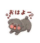 かまちょトイプードル(個別スタンプ:05)