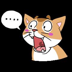 Meng魚柄の三毛猫