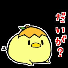 長崎県のびわぴよこ(たまにカピバラ)