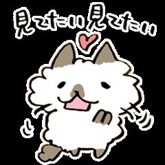 金沢弁をしゃべるネコ ~ひとこと編~
