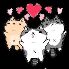3匹の猫生活