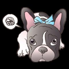 Emma Princess (French Bulldog)