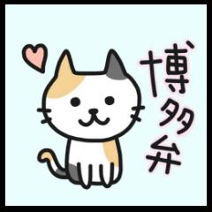 博多弁なネコちゃま