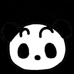 大人用 パンダのPuiPui