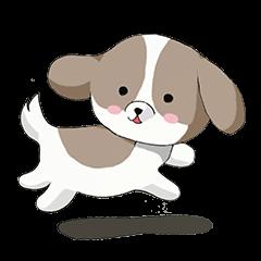 京都弁を話すシーズー犬 ポンタ