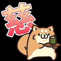 ボンレス犬(慈)