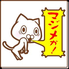 Re:スポーツする白い猫
