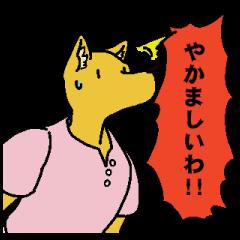 ツッコミ犬