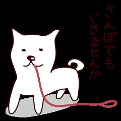 はげまし犬★シロ