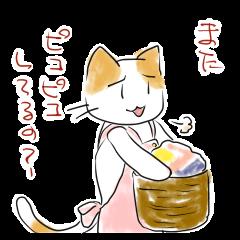 猫かあさん。