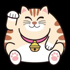かわいいデブ猫「とら」