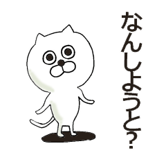 [LINEスタンプ] 博多弁のにゃんこ