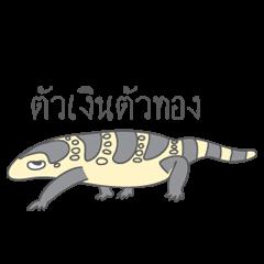 Varanus salvator of Thailand