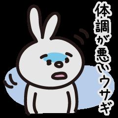 体調が悪いウサギ