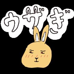 [LINEスタンプ] 兎君の画像(メイン)