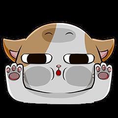【OTCDP】睡眼貓