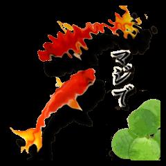スマホの水面に住む金魚。