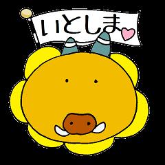 糸島のハマウリボウ