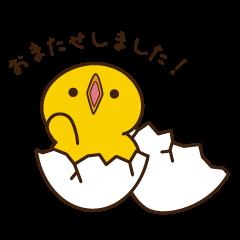 ピヨちゃん