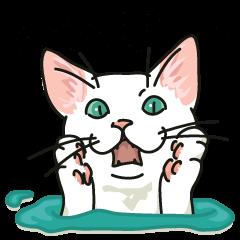 ナワバる、イカした白い猫
