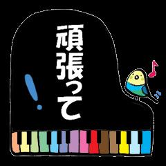 小鳥と音楽・ピアノの先生