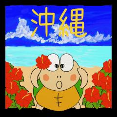 かめ次郎14 沖縄編