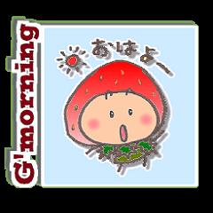福岡のこまめっちょ No.5 (いちごスーツ)