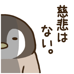 [LINEスタンプ] ゆるぺんぎん【ちょっぴり毒舌】 (1)
