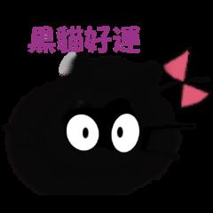 KIAの猫ちゃん~中国版~