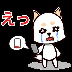 テクノロジー携帯電話の問題