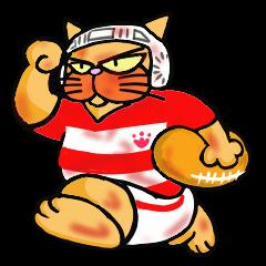 ラグビー大好き猫 1