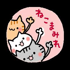 ねこまみれ(秋冬ver.)