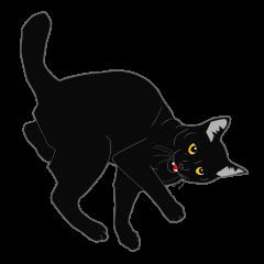 リアル系黒猫
