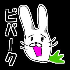 ミスター☆ビバーク