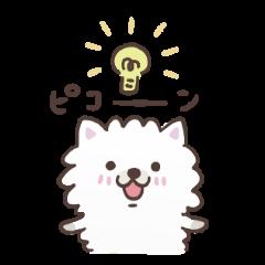もこ犬 vol.1