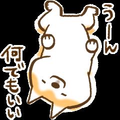 [LINEスタンプ] 柴ちん (1)