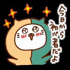[LINEスタンプ] にゃんなま( Beginner) (1)