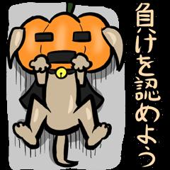 カボチャ犬(日本語版)