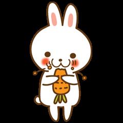 Star rabbit