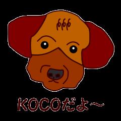 Koco(ココ)の日常