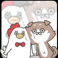[LINEスタンプ] 柴さんと手羽崎さん5 (1)
