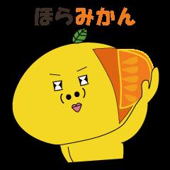 みかん花3【冬を楽しむ編】