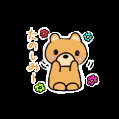 クマのクマちゃん