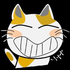 猫だ~~い好き!