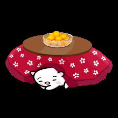 白玉ネコのたま 3