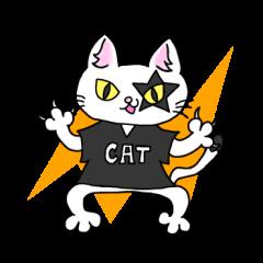 猫のMr.ごんた
