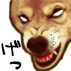 おーい!  柴犬ですよ。