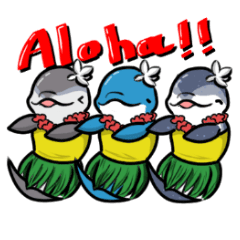 ハワイの海の仲間たち